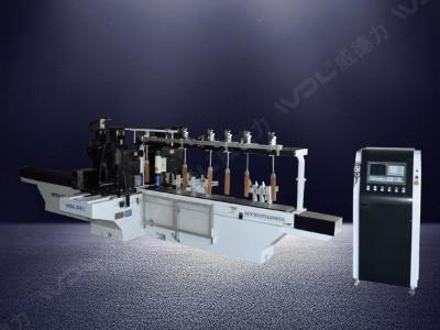 数控双面铣机(带砂光)  MXS62324Sx220